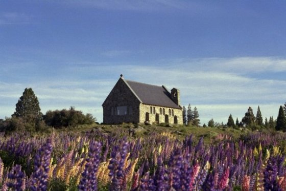 Church of the Good Shepherd, Lake Tekapo New Zealand