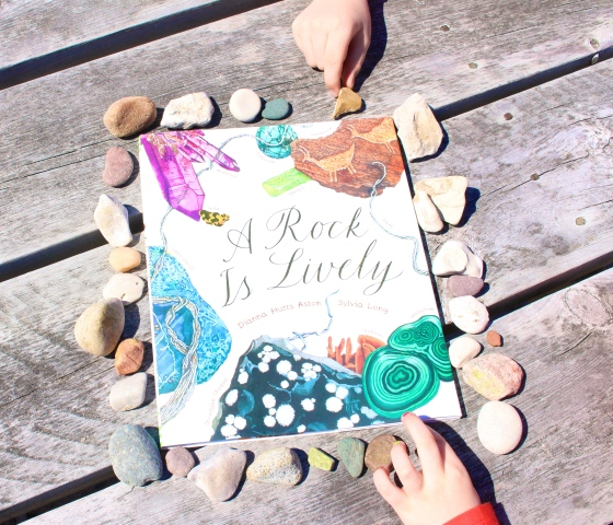 A Rock is Lively, by Dianna Hutts Aston and Sylvia Long| www.ameliesbookshelf.com